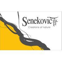 Vina Senekovič