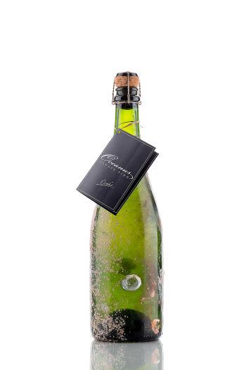 Oceanus - Sparkling Wine